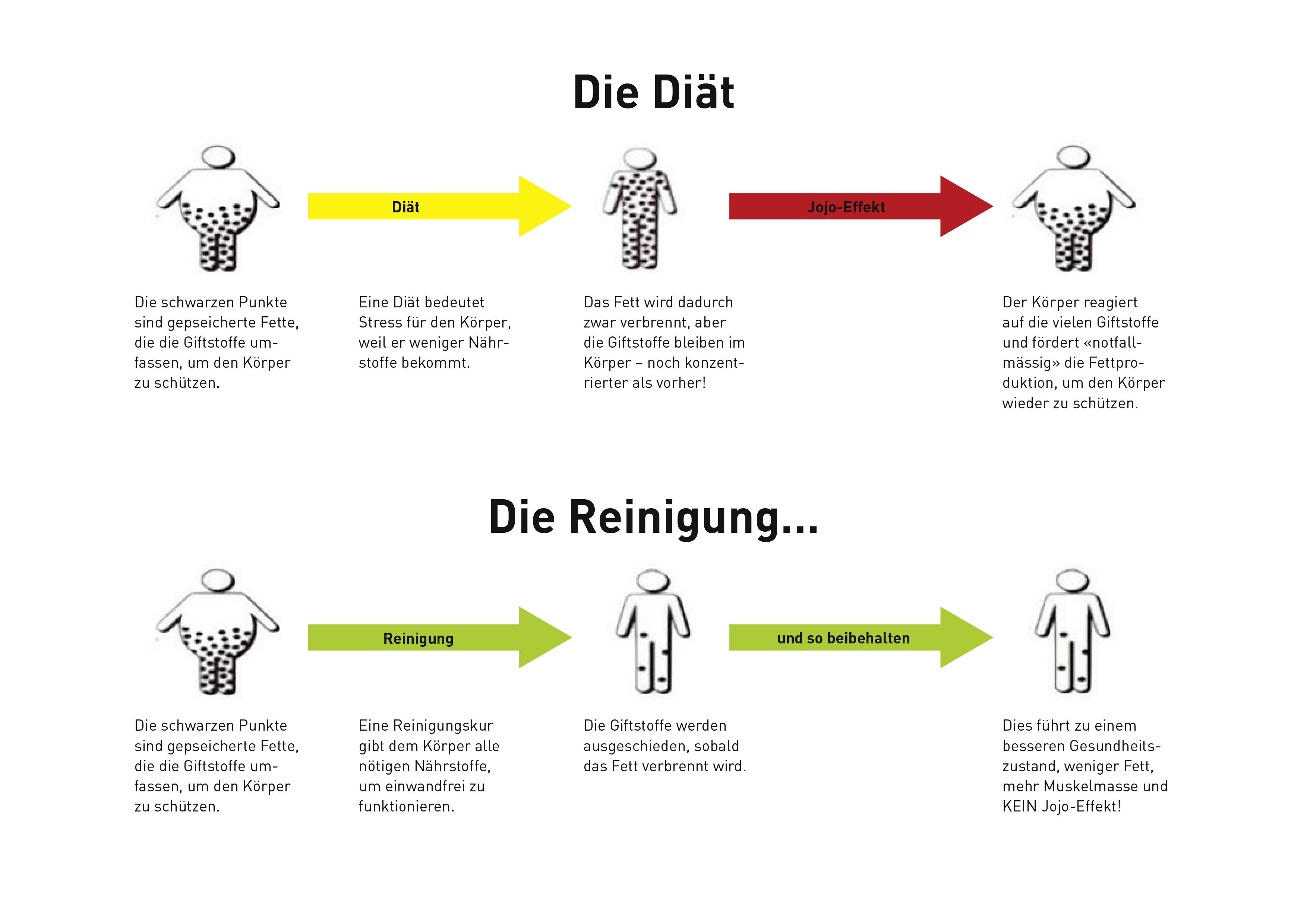 Unterschied Diät und Reinigung